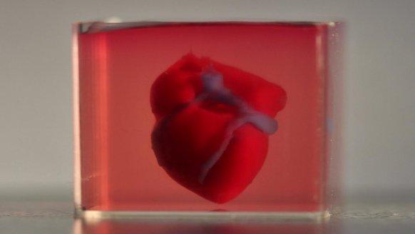 Araştırmacılar 3D kalp üretti
