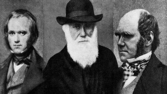 Charles Darwin'in Günlüklerinin Çalındığı, 20 Yıl Sonunda Kabul Edildi