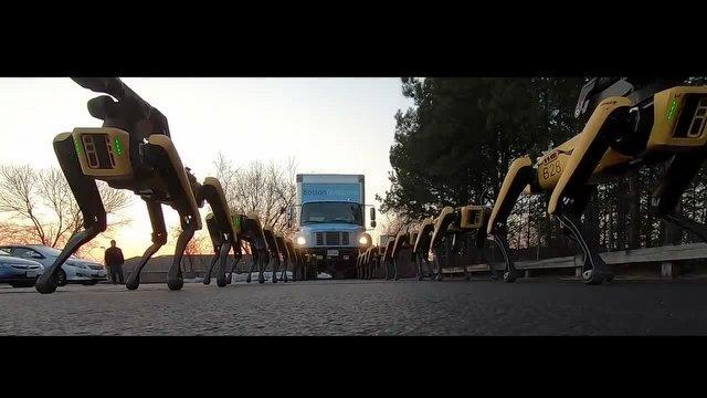 Boston Dynamics Robotları Artık Beraber Çalışıyor